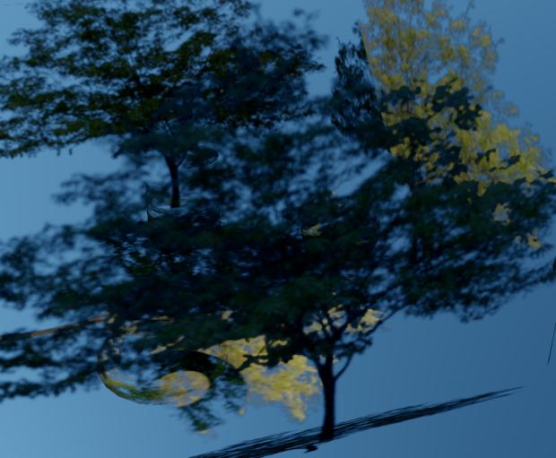 Tree_DBWeight